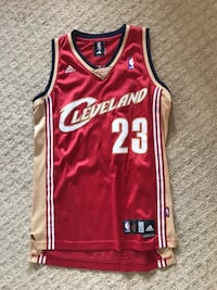 LeBron James Jersey Authentic  Lewisville, 75056