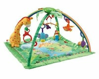 Baby play gym with a zoo theme Frederick, 21702