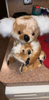 Plush koala  Wantagh, 11793