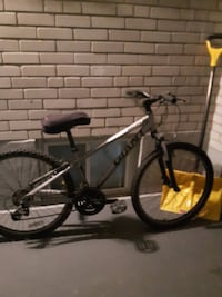 grey and black Giant bicycle
