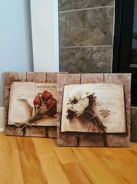 Pair of decorative canvas photos North Liberty, 52317