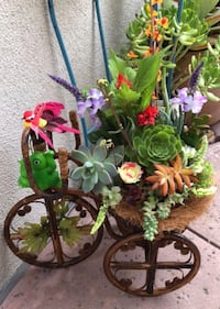 """Beautiful& nice Antique bamboo Tricycle, Come  with beautiful plant and different real Succullents Have 1or 1 or frogor Owl(You can choose one). come wiyh some fake flower.  . Very nice for gifts  or decoration anywhere .  Size 16"""" LX 24"""" T and 9""""D. EZ to Mission Viejo, 92692"""