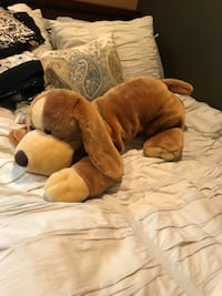 big stuffed dog who needs a home Walnut Creek, 94597