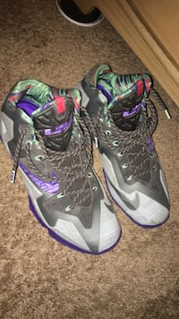 Lebrons size 10 New Windsor, 12553