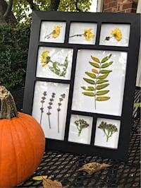 Flower picture frame Huber Heights, 45424