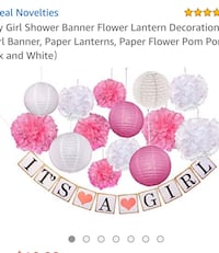 Baby Girl Shower Banner and Decoration