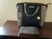 Silver and blue Brahmin Augusta, 30906
