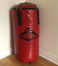red and black Everlast heavy bag Vaughan, L4H