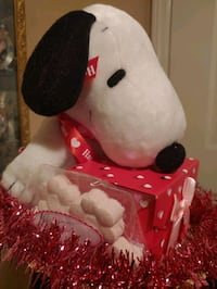 Snoopy Gift basket