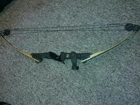 black and brown compound bow Watervliet, 49098
