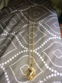Gold lion chain  552 km