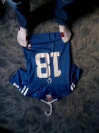 blue and white 18 NFL jersey Morenci, 49256