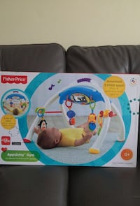 Fisher-price activity gym box