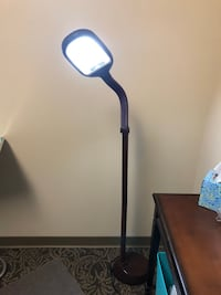 Facial/aesthetician/manicurist LED floor lamps  have 3 brown and 1 white  $50 each. Paid $100 each  Jacksonville Beach, 32250