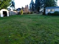 Yard Clean up and Landscaping Design Centralia