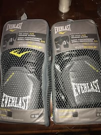 Everlast Boxing Gloves Great Condition (original price :100$) Vaughan, L4L 1H4
