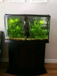 48 gallons bowl fishtank with 406 filter, heater, Kelowna, V1W 3L7