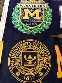 CWS U of Michigan Pennants Littleton, 80120