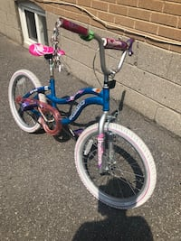 "$45 for girl's 20"" bicycle  Toronto, M9W 2A3"