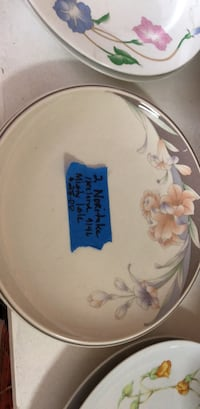 white and blue ceramic plate Tampa, 33614