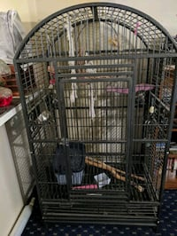 Black bird cage with toys and swings good condition.