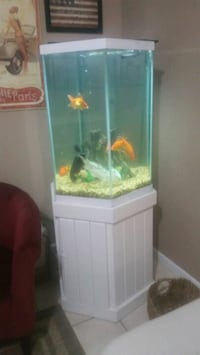 white wooden framed 50 gallons fish tank Pompano Beach, 33064