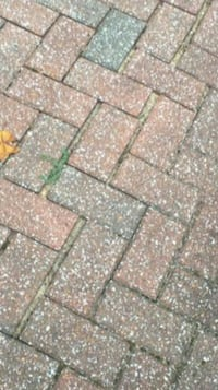 Pavers 100 bucks for 700sq ft or 120.00 deliverd East St. Louis, 62201