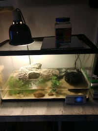10 gallon fish or reptile tank