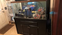 90 Gal fish tank with everything included  filter, decorations , stand etc Miami, 33142