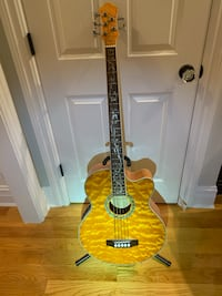 Michael Kelly 5 string Dragonfly Bass - MINT Glenview, 60026