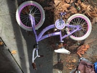 girl's purple and pink bicycle