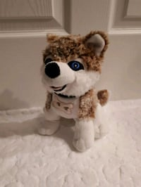 Cute Stuffed Blue-Eyed Doggy Pointe-Claire
