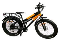 Electric Bike with 48V, 13AH Lithium Battery - New New York