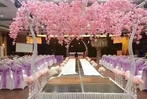 Available in white and pink Cherry Blossom Trees for rent