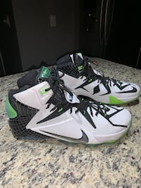 "Nike LeBron 12 Basketball Sneakers ""All Star"" Edition West Chester, 19380"