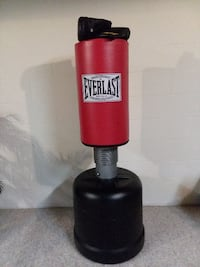 red and black Everlast heavy bag Wooster
