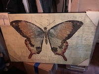 Frameless butterfly wall hanging 21x32, with musical notes in the background Gwynn Oak, 21207