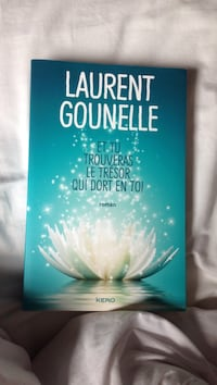 Livre Laurent Gounelle Remaucourt, 02100