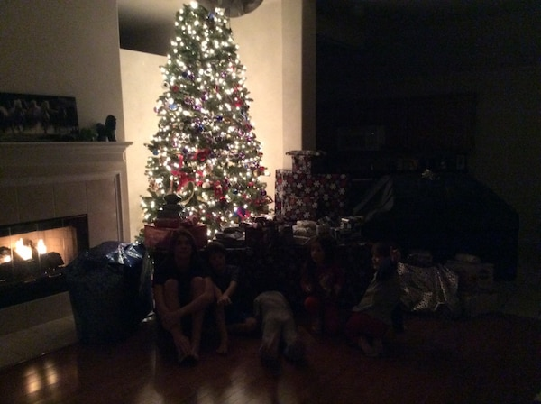 Used Beautiful 12 foot Christmas tree with lights! for sale in Grapevine - letgo