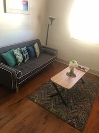 Futon, throw pillows, coffee table, and area rug!