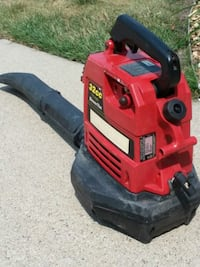 Craftsman leaf blower 2 cycle tuned Up