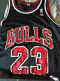 red and black Champion Chicago Bulls 23 jersey
