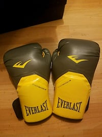 Pair of Everlast boxing gloves Columbia, 21044