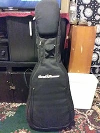 RoadRunner guitar case
