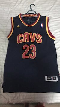 Lebron James Cleveland jersey Mississauga, L4X 1S9