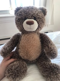 Brown and white bear plush toy Montréal, H2S 1Y3