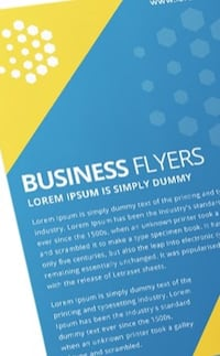 Flyers for any Business Owner/Events Elk Grove Village