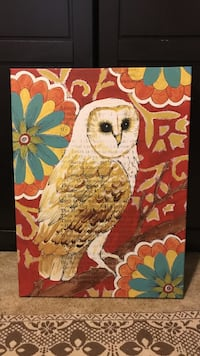white and brown Owl print painting