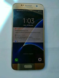 gold Samsung Galaxy S7  Laurel