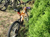 Mountain Bike - Small Size Guelph, N1G